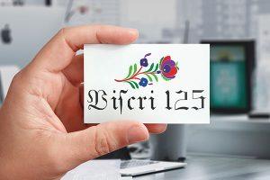 Logo-Viscri125